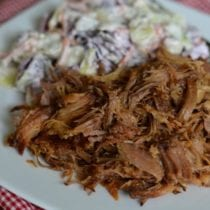 The Best Pulled Pork in a Crock Pot!